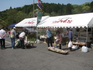 2014年春の陶器市