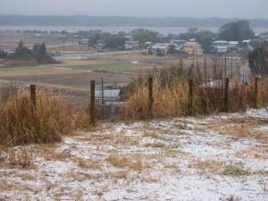 涸沼の初雪